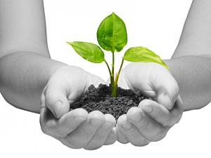 EcoVerf duurzaam